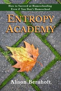 Entropy Academy Alison Bernhoft