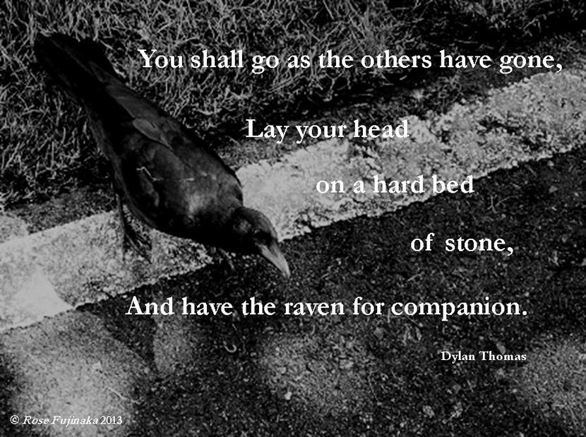 "Picture quote from the Dylan Thomas poem ""The Ploughman's Gone."" ""You shall go as the others have gone, Lay your head on a hard bed of stone, And have the raven for companion."""