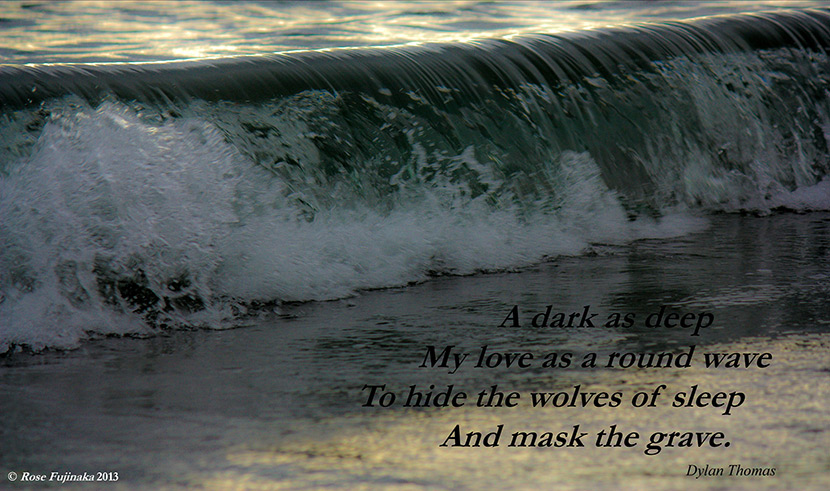 "Picture quote from the Dylan Thomas poem ""Poem."" ""A dark as deep My love as a round wave To hide the wolves of sleep And mask the grave."""